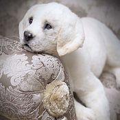 Куклы и игрушки handmade. Livemaster - original item Labrador. Dog in the style of still life. 60 cm.. Handmade.