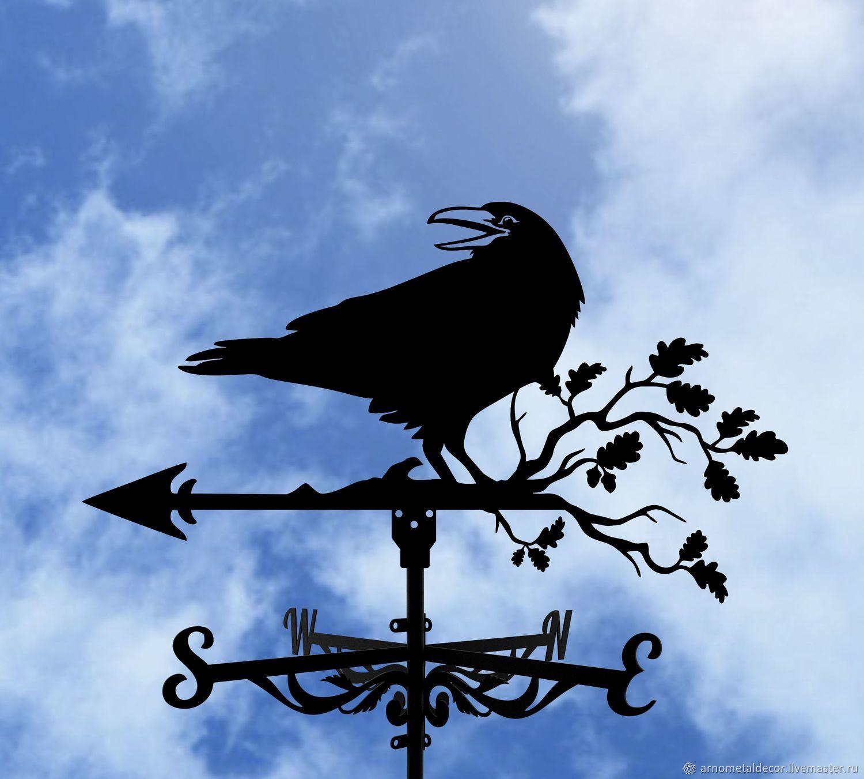 Weather vane on the roof ' Raven', Vane, Ivanovo,  Фото №1