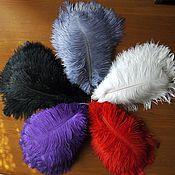 Перья ручной работы. Ярмарка Мастеров - ручная работа Перо страуса 15-20 см 17 цветов. Handmade.