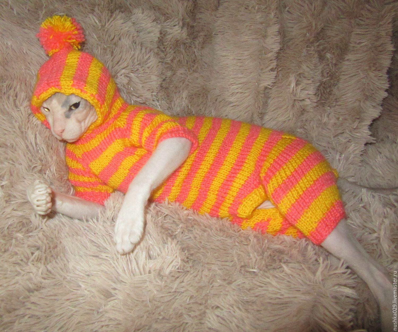 Комбинезон для кошки своими руками фото 248