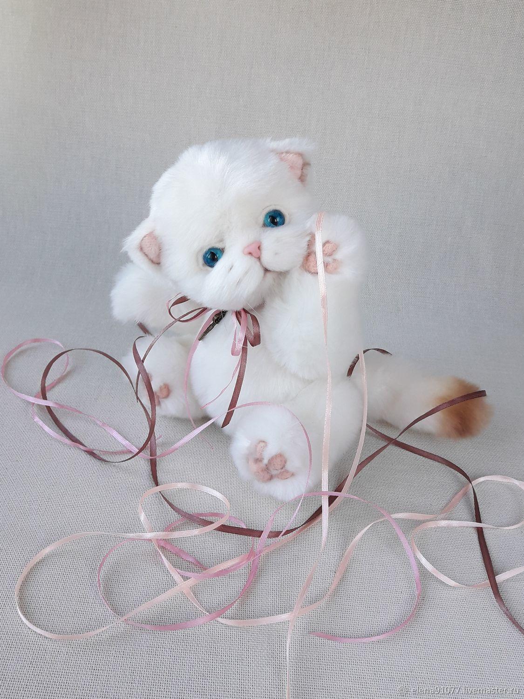 Teddy kitty 'Muse', Teddy Toys, Zheleznodorozhny,  Фото №1