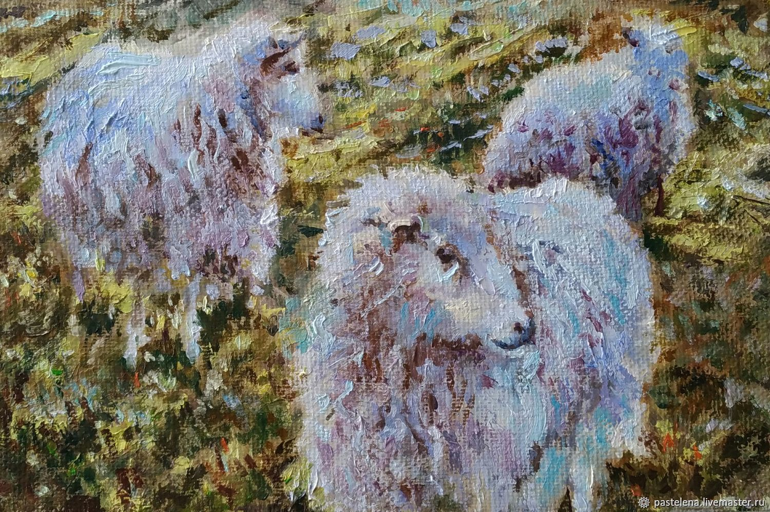 Oil painting of Sheep at sunset (olive blue Provence gift), Pictures, ,  Фото №1