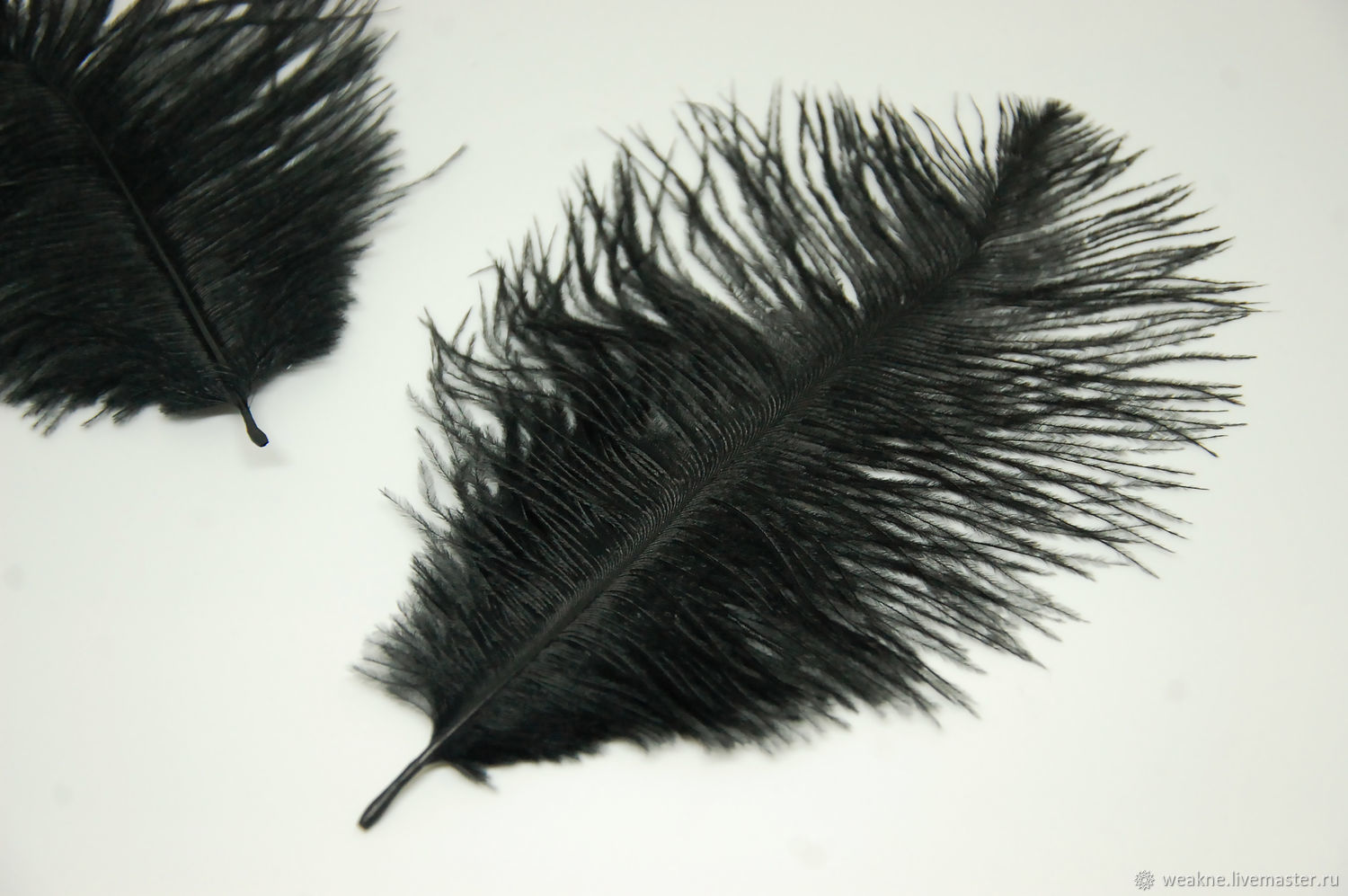 Ostrich feathers black 14-17 cm, Feathers, Moscow,  Фото №1