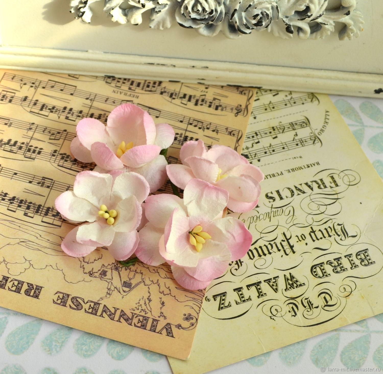SCB291202 нежно-розовые