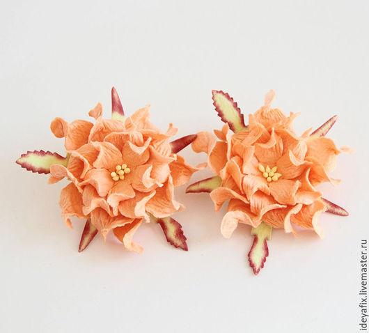 Цена указана за 1 шт.  Диаметр цветка -  7 см.