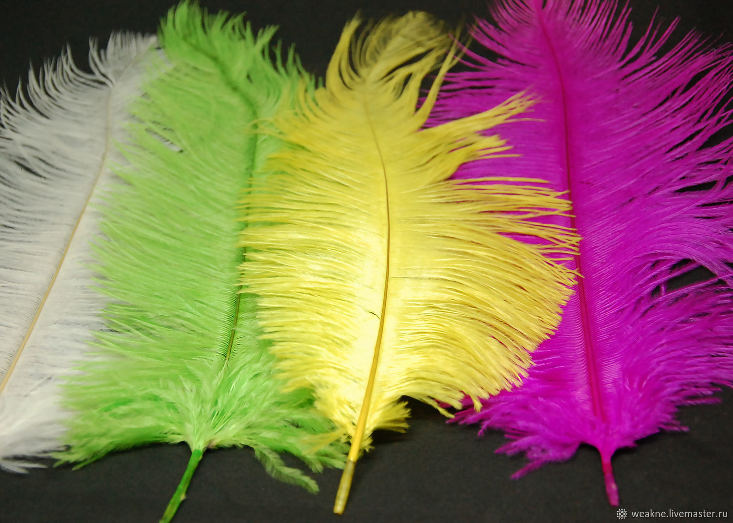 Ostrich feathers different colours 30 cm, Feathers, Moscow,  Фото №1