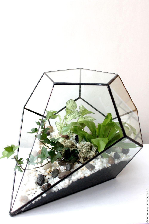 The Floriana. Glass interior Floriana with fern and heteroj, Florariums, St. Petersburg,  Фото №1