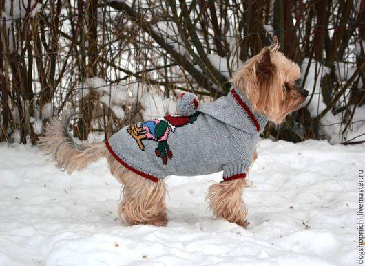 Одежда для собак, ручной работы. Ярмарка Мастеров - ручная работа. Купить Свитер для собак с вышивкой. Handmade. Разноцветный, свитер с капюшоном