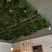 Дизайн и реклама handmade. Livemaster - original item Ceiling landscaping. Handmade.