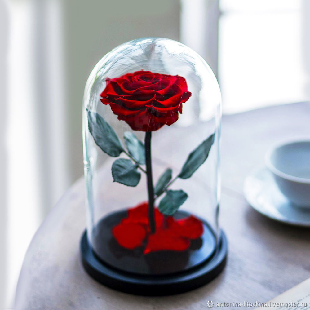 Rose in the flask, Gifts for March 8, Belgorod,  Фото №1