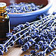 Spanish lavender 10 ml (Aroma zone Lavande aspic). Oil. For inventions. My Livemaster. Фото №4