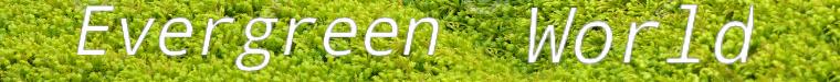 Анастасия *Evergreen World*