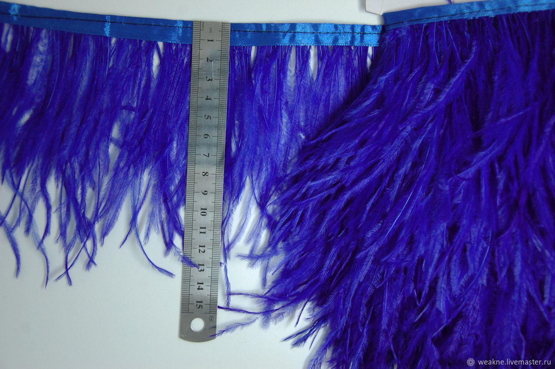 Trim of ostrich feathers 10-15 cm ultramarin, braid, Moscow,  Фото №1