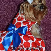 """Для домашних животных, ручной работы. Ярмарка Мастеров - ручная работа Платье """" Красный горошек"""". Handmade."""