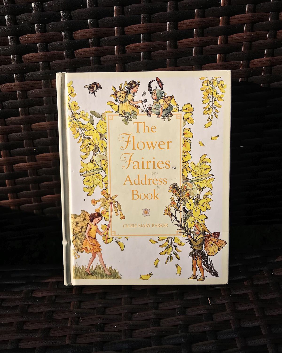 Address book flower fairies, Flower Fairies, Cicely Mary Barker, Vintage books, Moscow,  Фото №1
