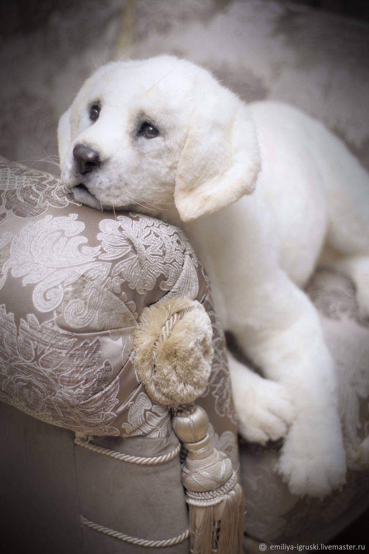 Лабрадор. Собака в стиле натюр. 60 см, Мягкие игрушки, Тюмень,  Фото №1