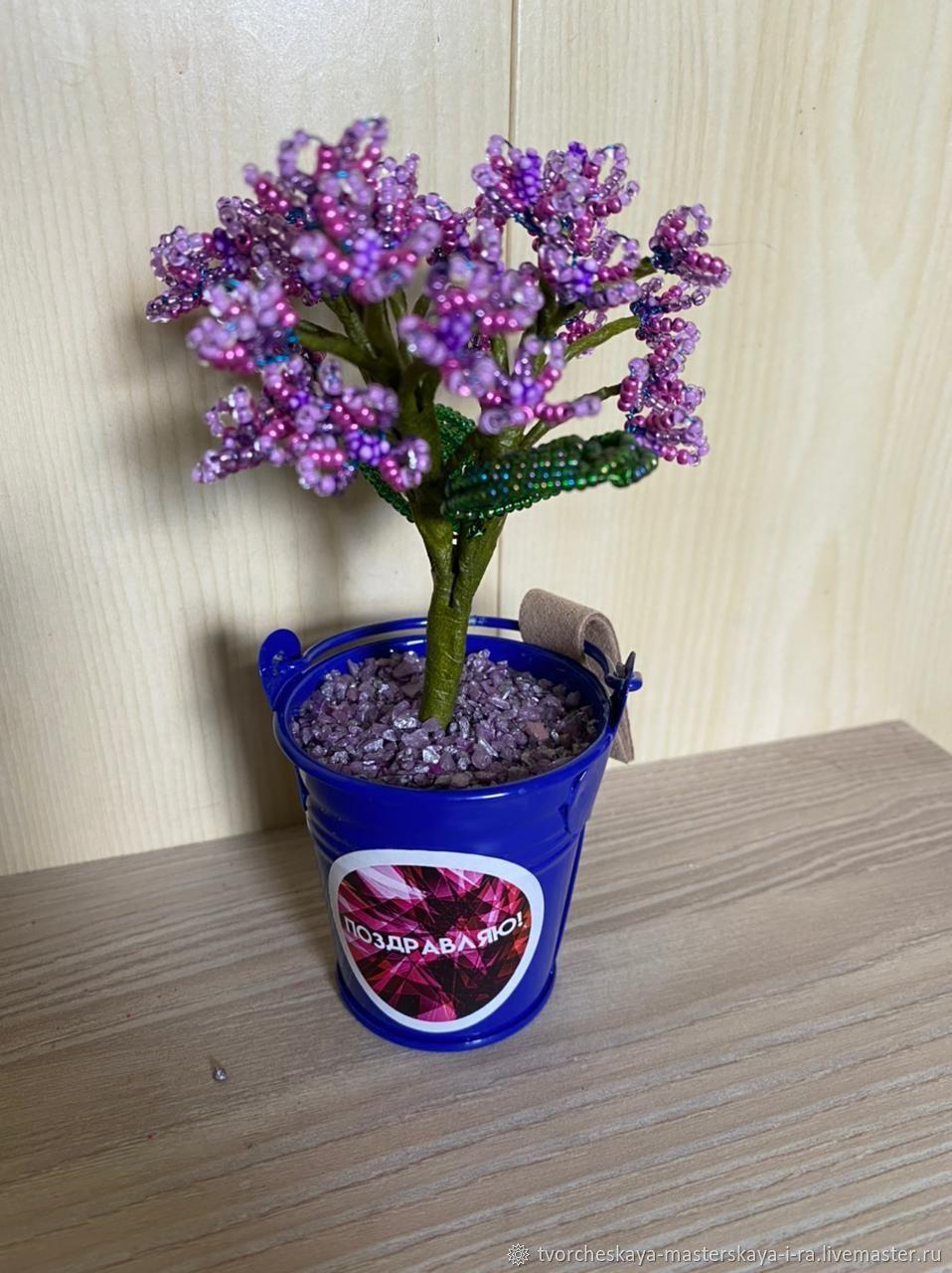 Ветка гортензии в ведёрке. 13 см, Цветы, Новокузнецк,  Фото №1