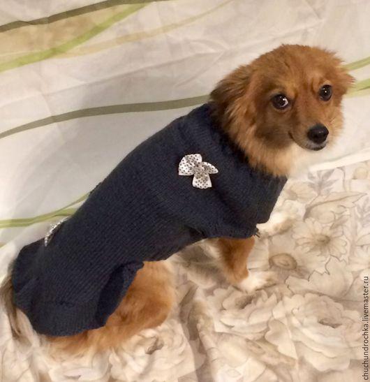 Одежда для собак, ручной работы. Ярмарка Мастеров - ручная работа. Купить Платье Одри. Handmade. Темно-серый, платье, тепло