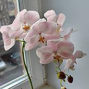 Цветы и флористика ручной работы. Ярмарка Мастеров - ручная работа Искусственная орхидея в горшке. Handmade.