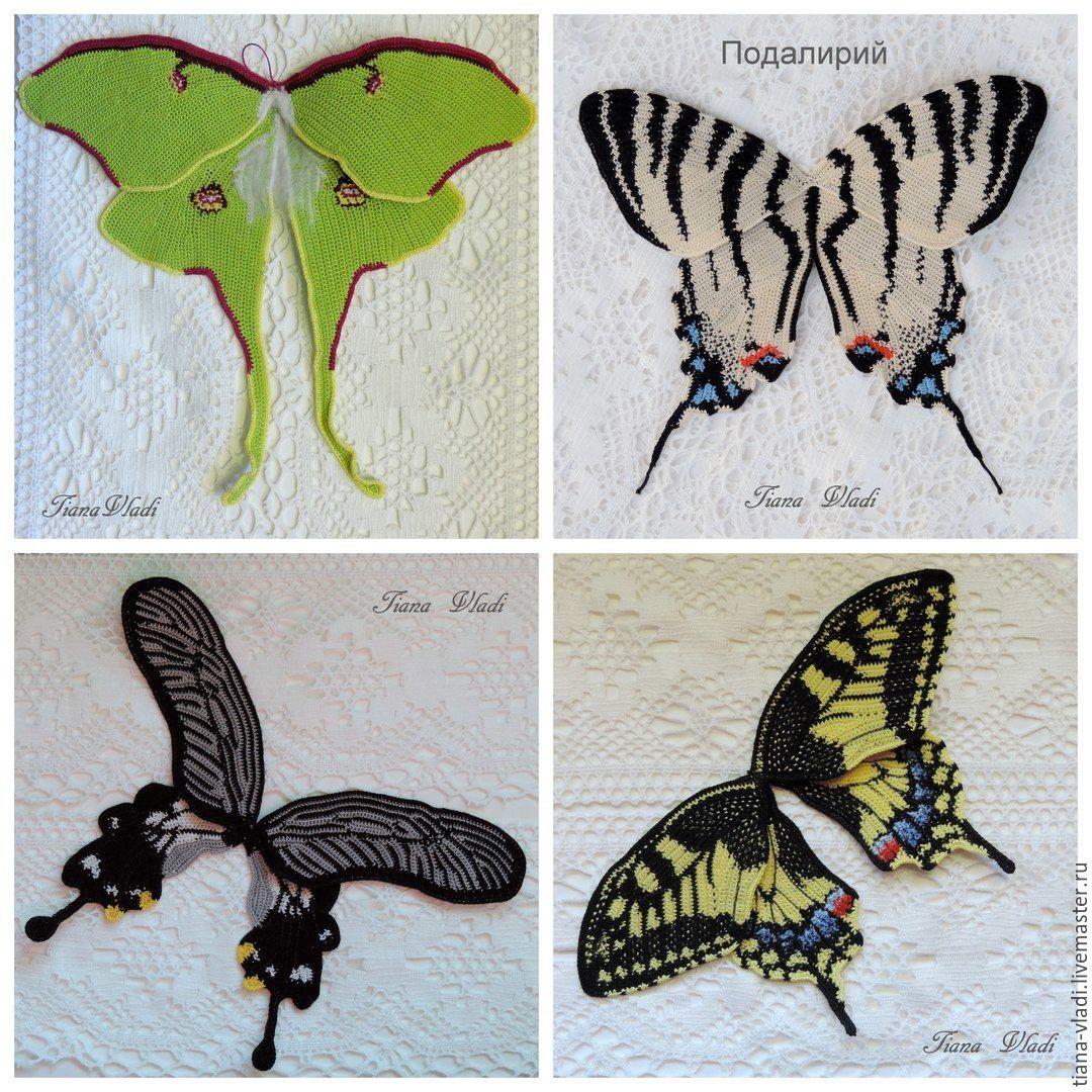 Бабочки фото и схема