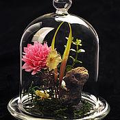 Материалы для творчества ручной работы. Ярмарка Мастеров - ручная работа Стеклянный купол  на стеклянной основе. Handmade.