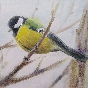 Картины и панно ручной работы. Ярмарка Мастеров - ручная работа Большая синица интерьерная картина акварелью с птицей. Handmade.