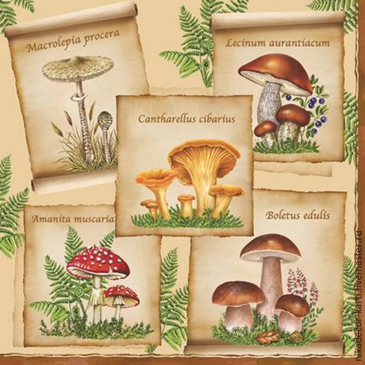 Декупаж и роспись ручной работы. Ярмарка Мастеров - ручная работа. Купить Коллекция грибов (SLOG014901) - салфетка для декупажа. Handmade. Разноцветный