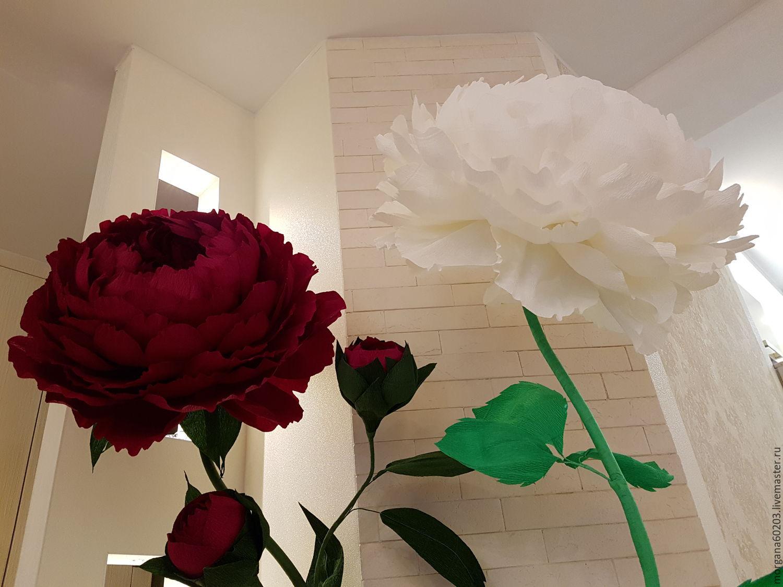 Гигантские цветы из гофрированной бумаги мастер класс