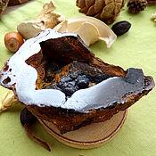 Фен-шуй и эзотерика handmade. Livemaster - original item Geode goethite. Handmade.