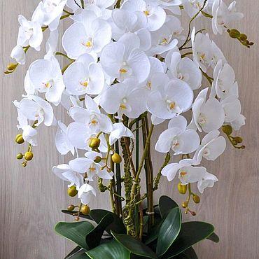 Цветы и флористика. Ярмарка Мастеров - ручная работа Орхидея фаленопсис, имитация живого растения.. Handmade.