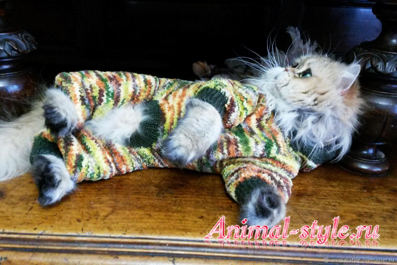 Plush suit 'Khaki', Pet clothes, St. Petersburg,  Фото №1