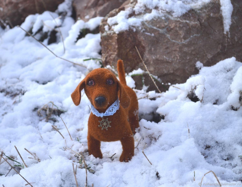 felt toy: Dog Dachshund, Felted Toy, Simferopol,  Фото №1