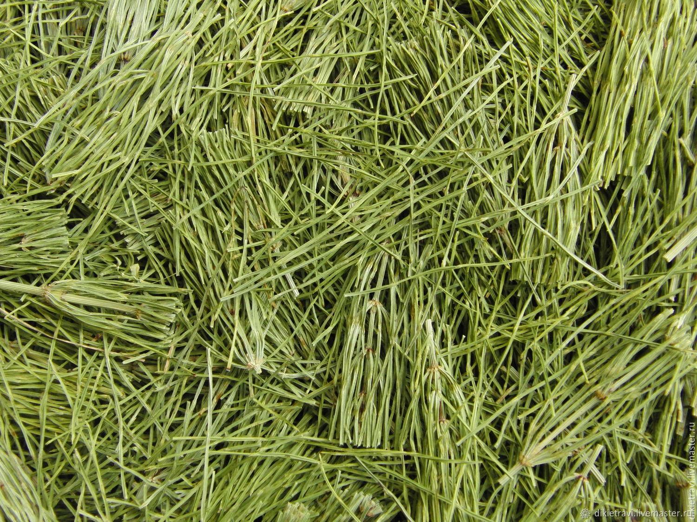 Хвощ полевой. Трава. (Хвощ северный, толкачик и др.). Цена за 1г. трав, Травы, Красная Заря,  Фото №1