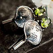 Украшения ручной работы. Ярмарка Мастеров - ручная работа Серебряные серьги из серебра, необычные украшения, серьги серебро. Handmade.
