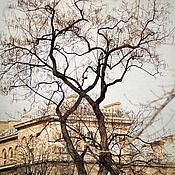 Картины и панно ручной работы. Ярмарка Мастеров - ручная работа Фотокартина город для интерьера, Париж фото городской пейзаж с деревом. Handmade.