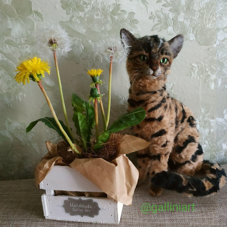 Бенгальский кот, Мягкие игрушки, Москва,  Фото №1