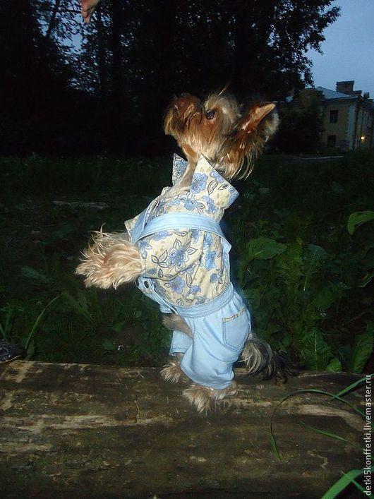 Одежда для собак, ручной работы. Ярмарка Мастеров - ручная работа. Купить Летний комбинезончик для Вашего любимца. Handmade. Собака, стильно