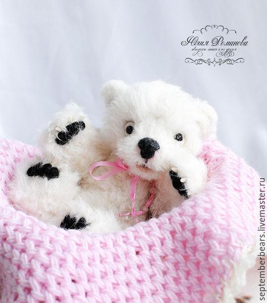 Мишки Тедди ручной работы. Ярмарка Мастеров - ручная работа. Купить белый медвежонок Льдинка. Handmade. Белый, полярный медвежонок