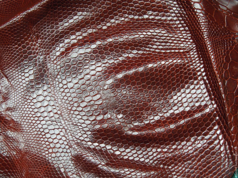 Натуральная кожа игуаны (обрезь) №5, Кожа, Москва, Фото №1