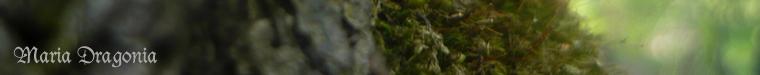 Мария Dragonia свечи и украшения