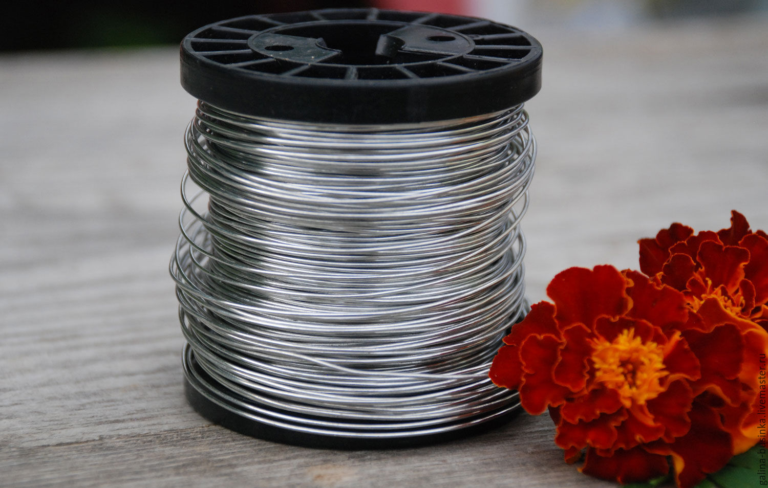 0,8 mm copper Wire, silver, Wire, Moscow,  Фото №1