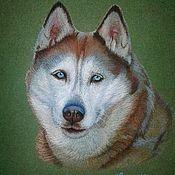 Картины и панно ручной работы. Ярмарка Мастеров - ручная работа Портрет хаски. Handmade.