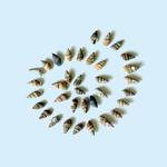 Ракушки с моря Италии - Ярмарка Мастеров - ручная работа, handmade
