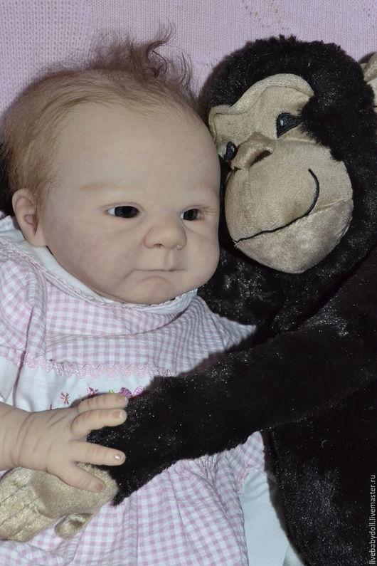 Куклы-младенцы и reborn ручной работы. Ярмарка Мастеров - ручная работа. Купить Кукла реборн Паулина. Handmade. Реборн