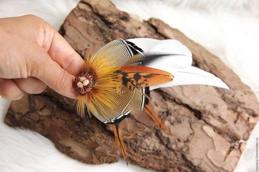 Коричневая заколка с перьями `Танец пыстыни` Авторские украшения из перьев. Анастасия Николаева.