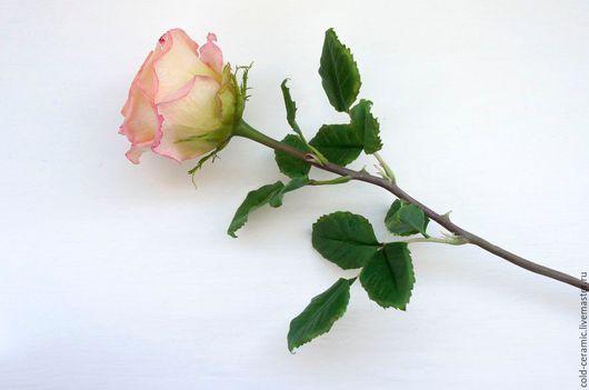 Цветы ручной работы. Ярмарка Мастеров - ручная работа. Купить Роза. Handmade. Бледно-розовый, керамическая флористика, роза из глины