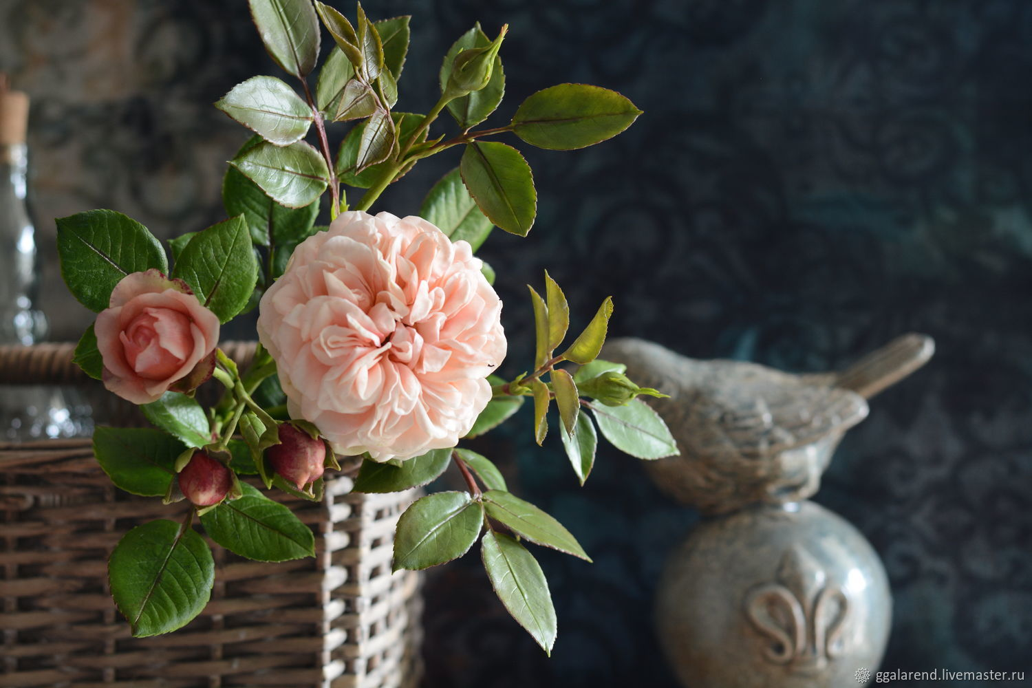 Chippendale is a rose as a work of art