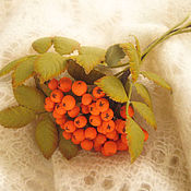 Украшения handmade. Livemaster - original item the colors of the skin. decoration brooch pin rowan. Handmade.