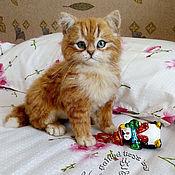 Куклы и игрушки ручной работы. Ярмарка Мастеров - ручная работа Котёнок.. Handmade.