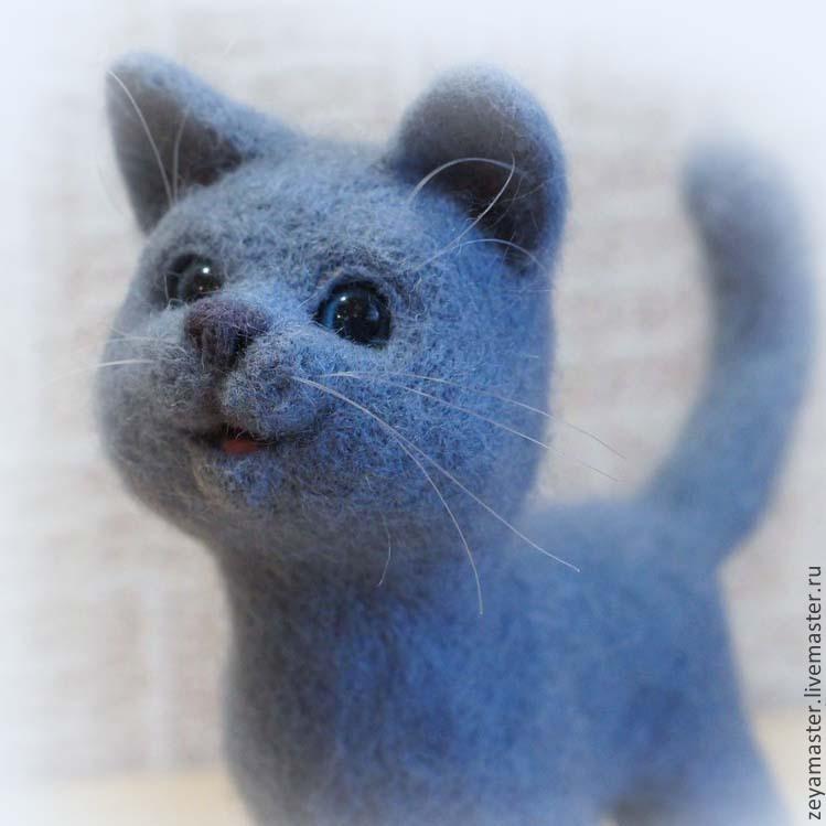 фото голубой британец